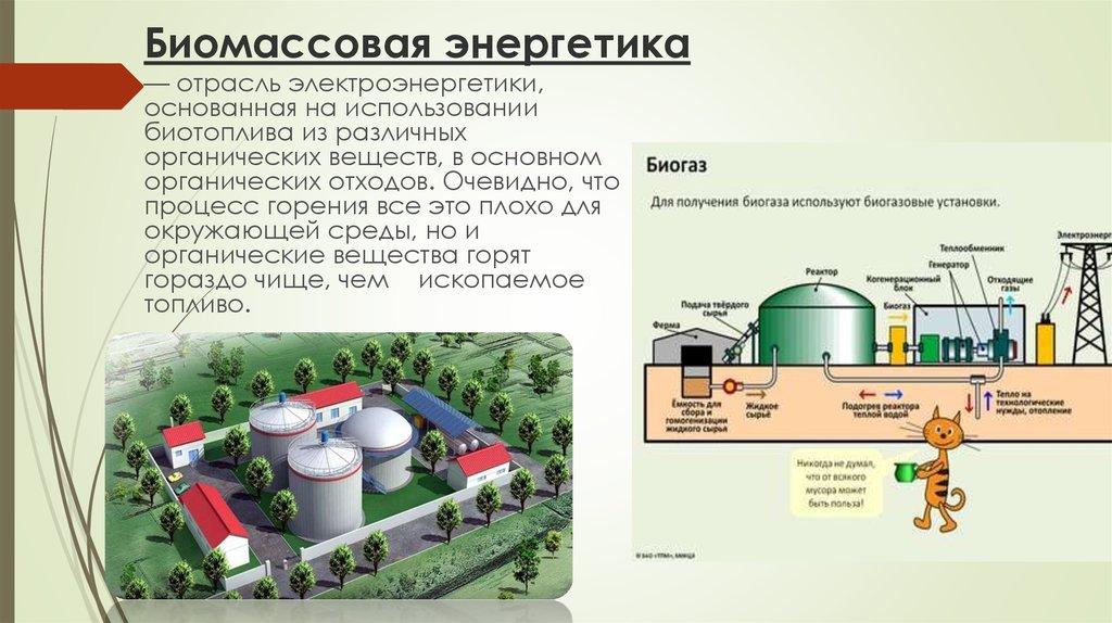 Что такое биомасса и ее энергетика 9cd81a4b75512